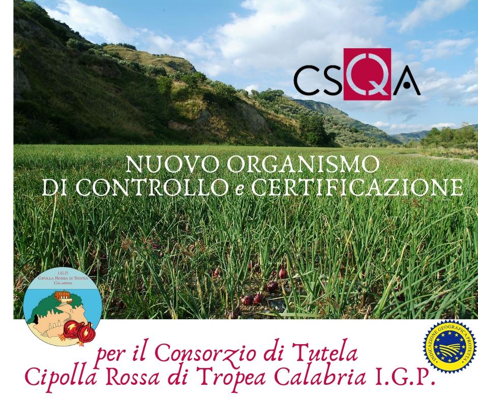 Cipolla rossa di Tropea Calabria Igp: CSQA il nuovo ente di certificazione